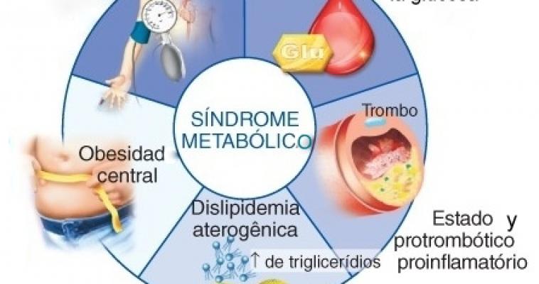 El Sindrome Metabolico primera parte – Asesoría Médica al